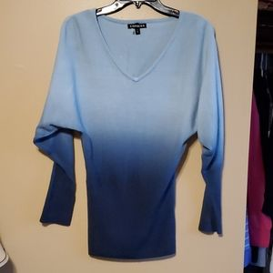 NWOT Express Sweater
